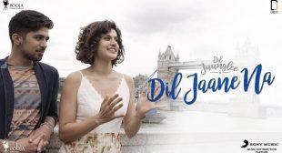 DIL JAANE NA LYRICS – Dil Juunglee – Mohit Chauhan, Neeti Mohan