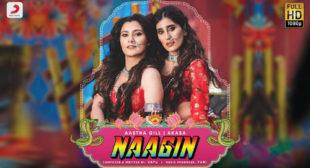 Naagin Lyrics by Aastha Gill