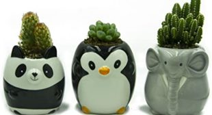 Panda Succulents Pot/Planters 3.5 inch Cute Animal Ceramic Flower Pot/Planter Best Gifts for Family (Black and White Laughing Panda)